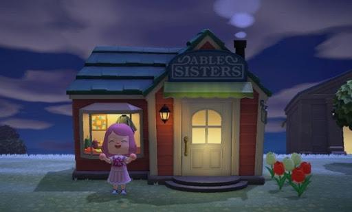 Cranny Animal Crossing Nooks comment télécharger des skins et des tenues pour le croisement d'animaux?