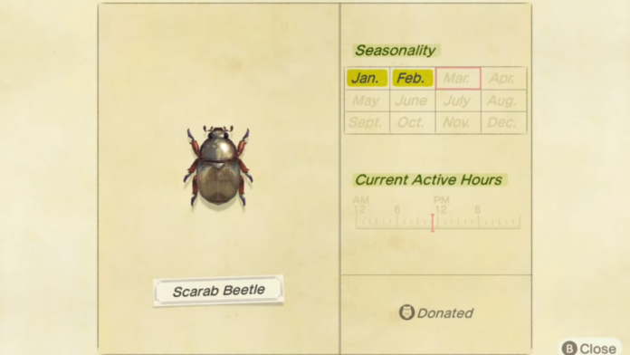 How to catch a Scarab Beetle in Animal Crossing New Horizons