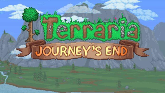 Impossible de ramasser des objets à la fin du voyage à Terraria