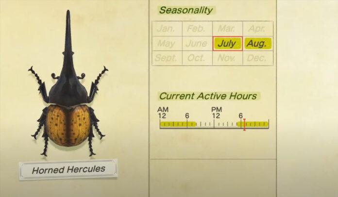 Comment attraper un Hercule cornu dans Animal Crossing New Horizons