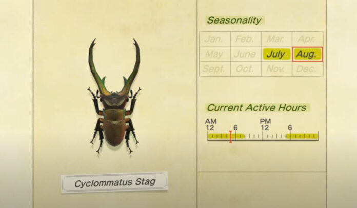 How to catch Cyclommatus Stag in Animal Crossing New Horizons
