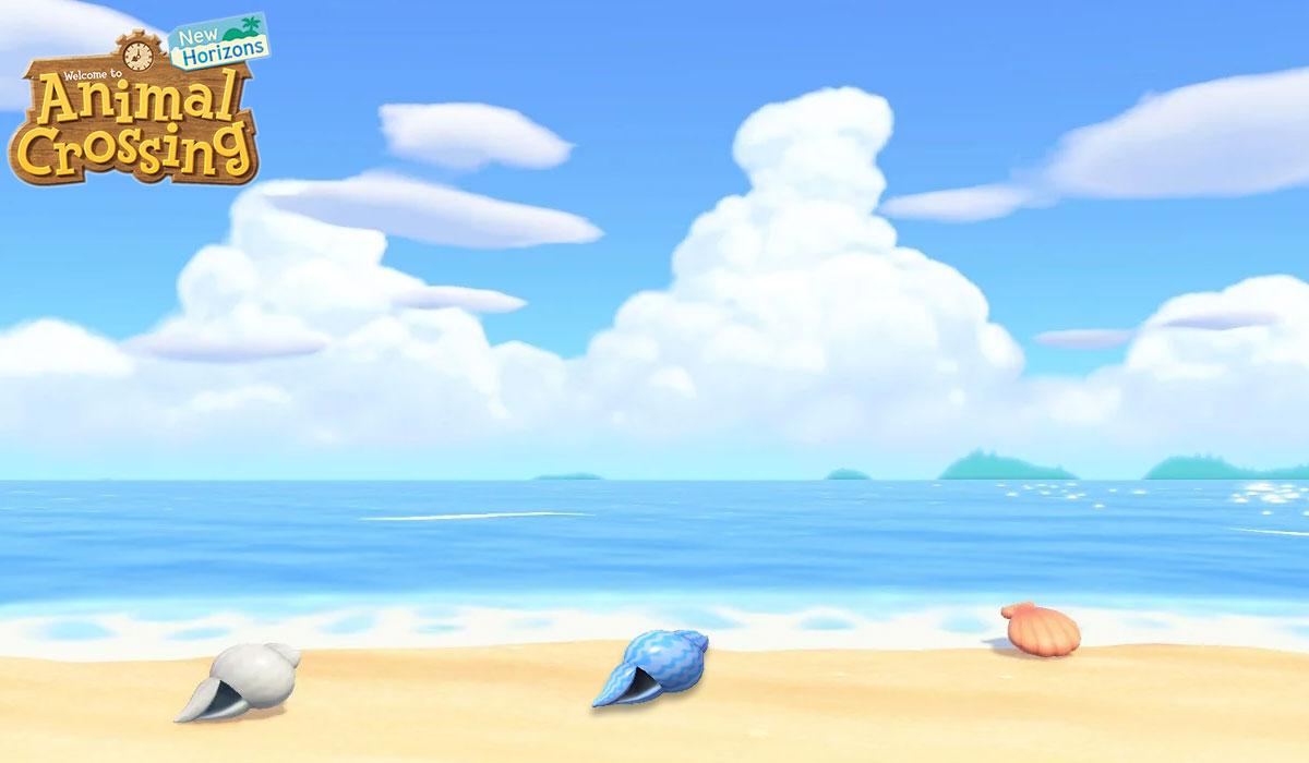 Comment obtenir des coquillages d'été dans Animal Crossing New Horizons
