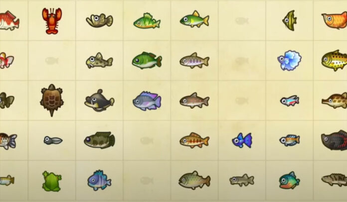 Fish and Bugs à attraper avant juillet dans Animal Crossing New Horizons