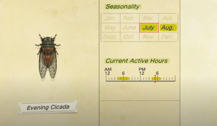 How to catch an Evening Cicada in Animal Crossing New Horizons