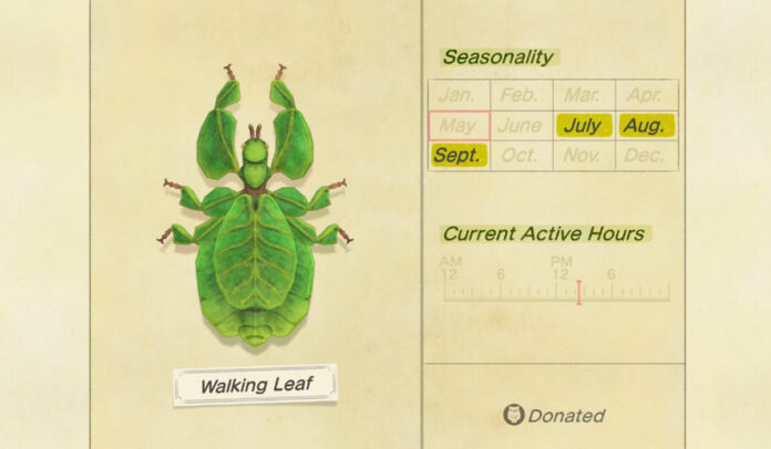 How to catch a Walking Leaf in Animal Crossing New Horizons