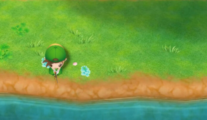 How to find a Fishing Rod in Story of Seasons: Friends of Mineral Town
