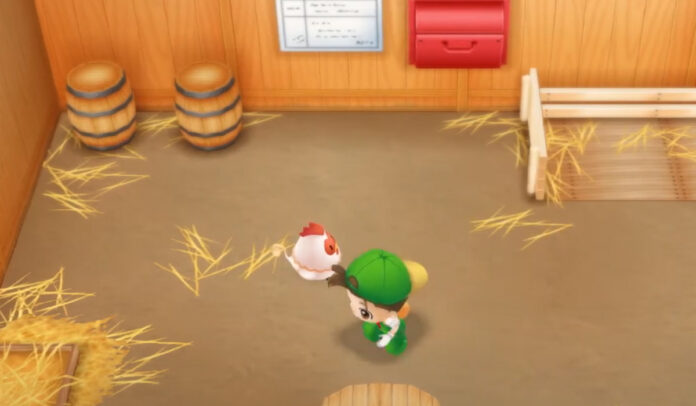 Où acheter et élever des poulets dans Story of Seasons: Friends of Mineral Town