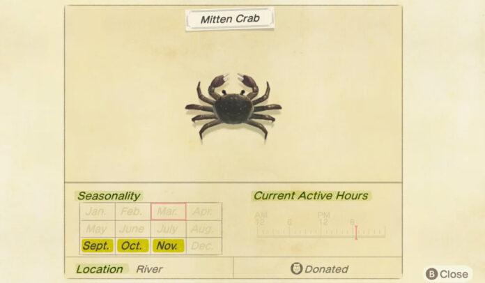 Comment attraper un crabe mitaine dans Animal Crossing New Horizons