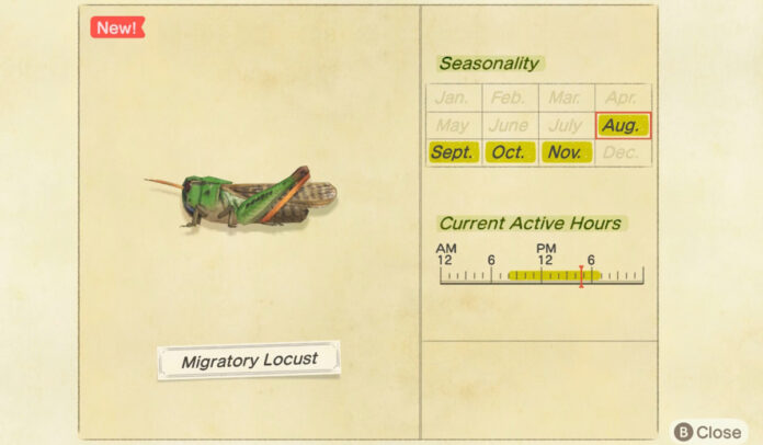 How to catch a Migratory Locust in Animal Crossing New Horizons