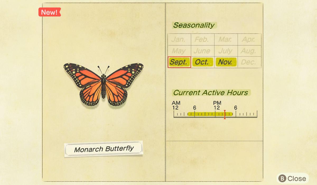 Comment attraper un papillon monarque dans Animal Crossing New Horizons