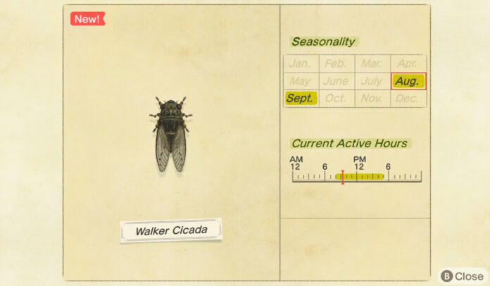 How to catch a Walker Cicada in Animal Crossing New Horizons