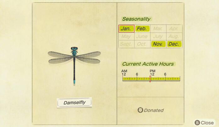 How to catch a Damselfly in Animal Crossing New Horizons