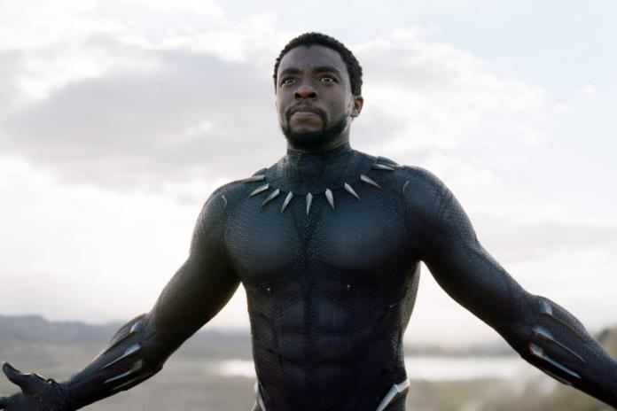 Black Panther DLC révèle un retard en raison de la mort de Chadwick Boseman