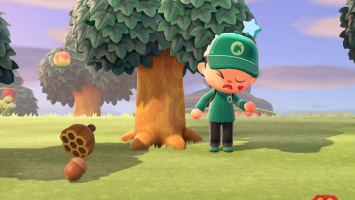 How to get Acorns in Animal Crossing New Horizons
