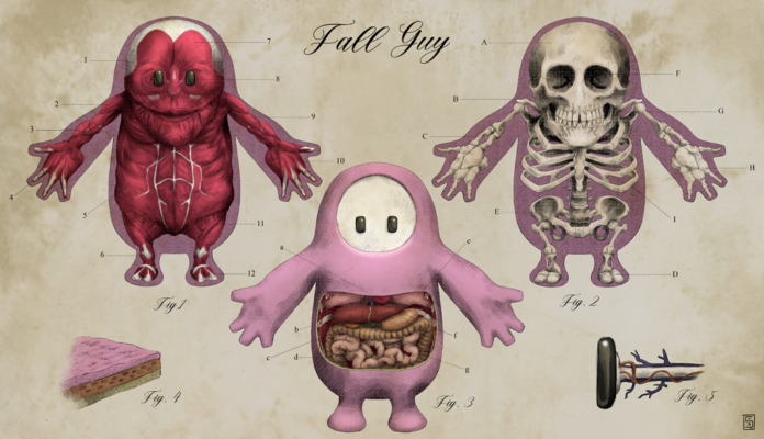 Vous êtes-vous déjà demandé ce qu'il y avait dans un Fall Guy? Un fanart anatomique révèle l'horrible vérité
