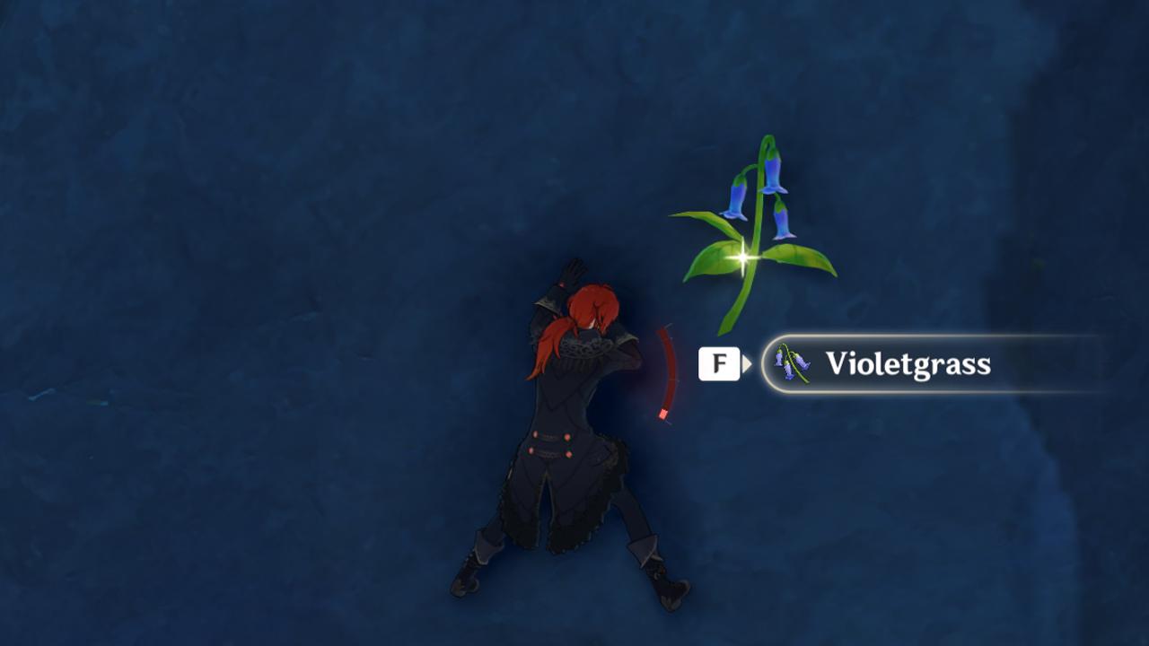 Où trouver Violetgrass à Genshin Impact