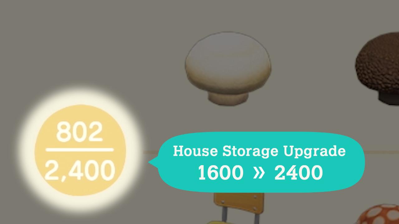 Mise à jour hivernale d'Animal Crossing New Horizons - Rangement de la maison