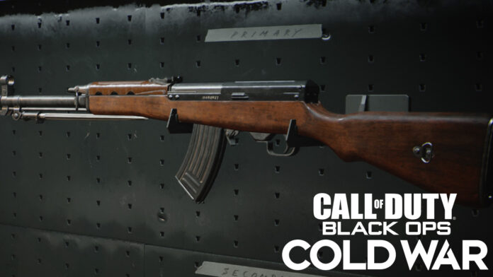 Call of Duty: Best Type 63 loadout in Cold War