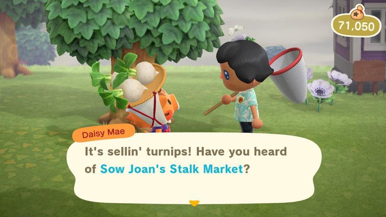Pouvez-vous planter des navets dans Animal Crossing: New Horizons?