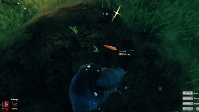 How to Plant Carrot Seeds in Valheim