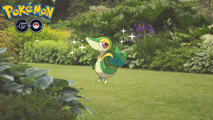 Comment attraper Shiny Snivy dans Pokémon GO