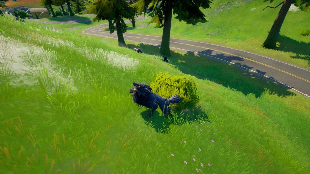 Où trouver un croc de loup, une défense de sanglier et des plumes de poulet à Fortnite